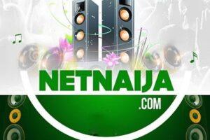 thenetnaija.com